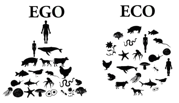 ego-eco